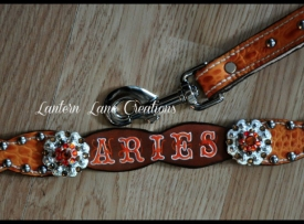 dog-collar-aries