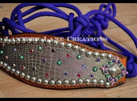 purple-rope-halter-bronc-band