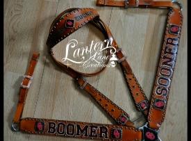 boomer-sooner